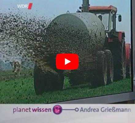 Traktor bringt Gülle aus auf das Feld